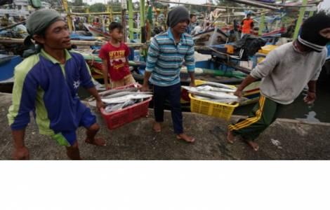 Arbeiten Auf Hawaii amerika usa auf fischkuttern in hawaii arbeiten illegale fischer