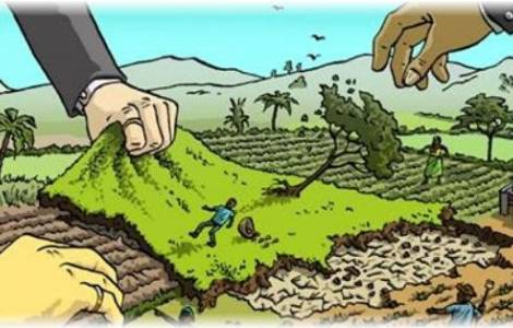 Risultati immagini per land grabbing africa
