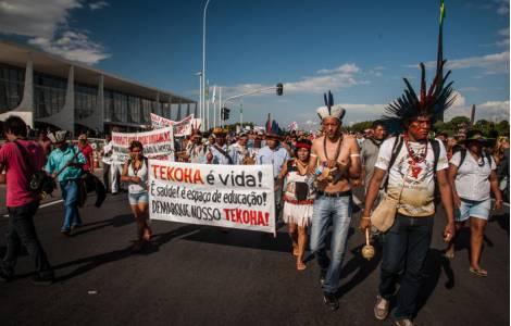 2017, Annus horribilis pour l'Amazonie selon les r